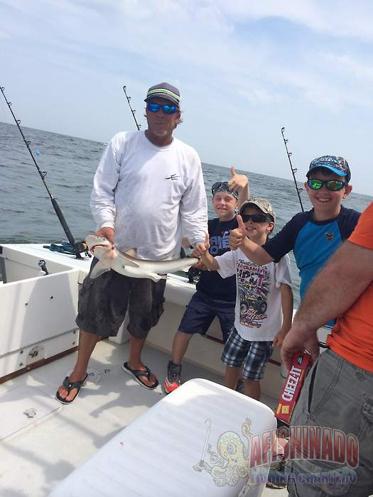 Inshore trips from rudee inlet fishing report for Virginia beach fishing charters
